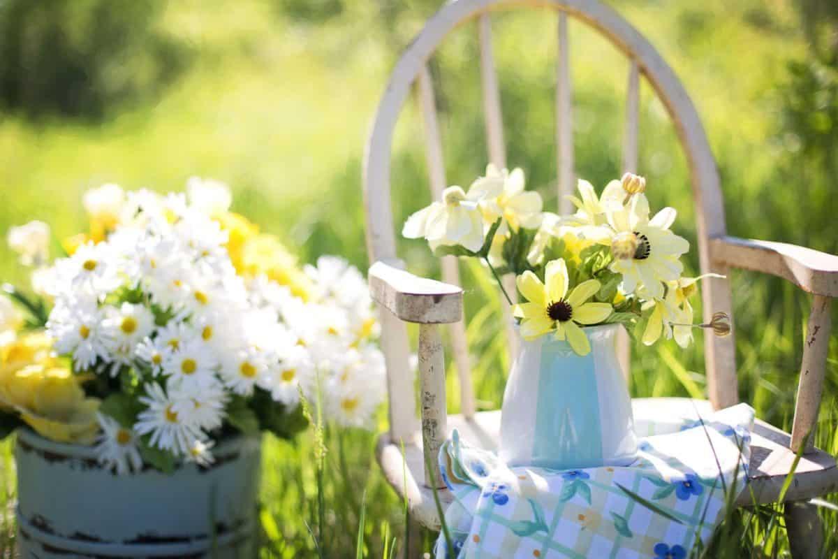 jardin amenagement fleurs
