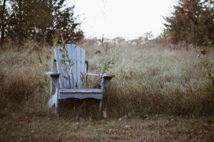 chaise adirondack bois nature abandonné