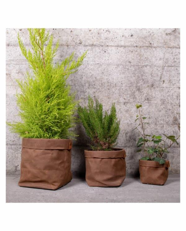 cache pots plantes deco planthav