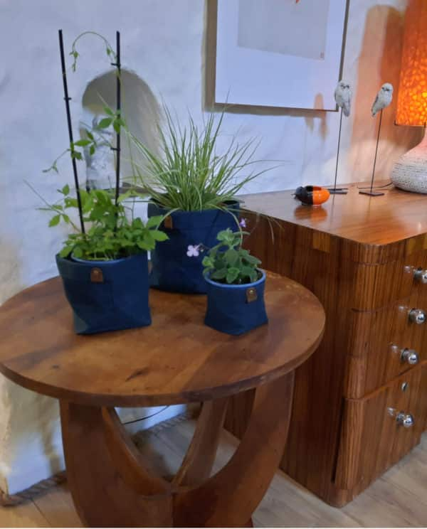 cache pot bleu plantes