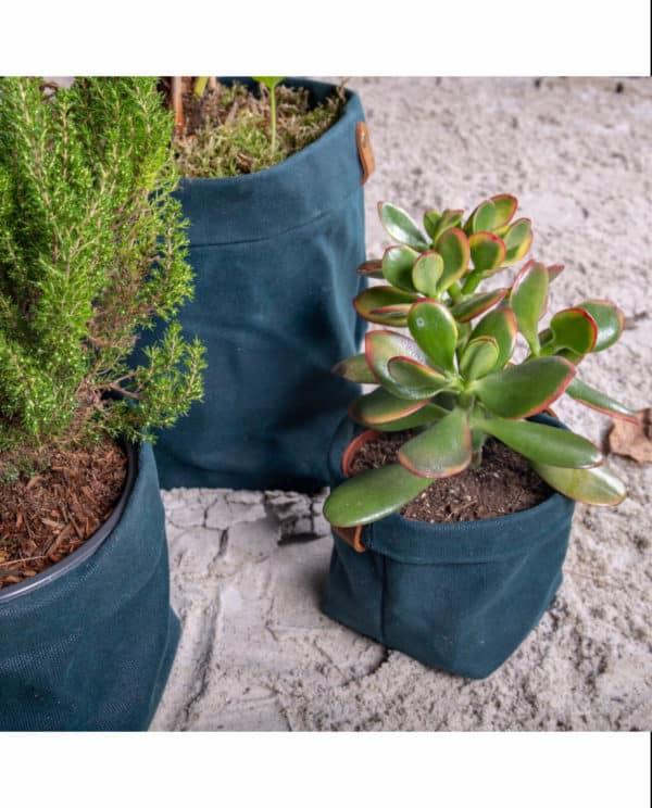 cache pot plante plantbo