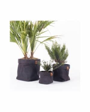 cache pot gris plantch